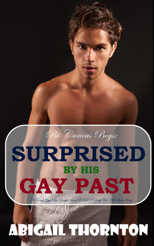 Bi-Curious Boys: Surprised By His Gay Past